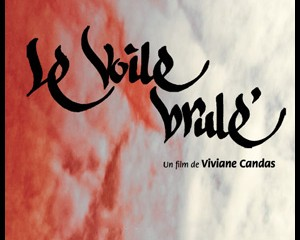 voile_brule