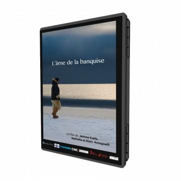 dvd-amebanquise