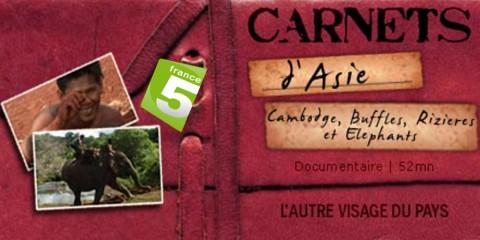 1000x550_video-carnets-d-asie-cambodge-buffles-rizieres-et-elephants-4-4_pf copie